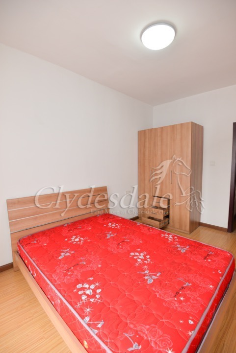 Pictures of Apartment rent in bin jiang 2